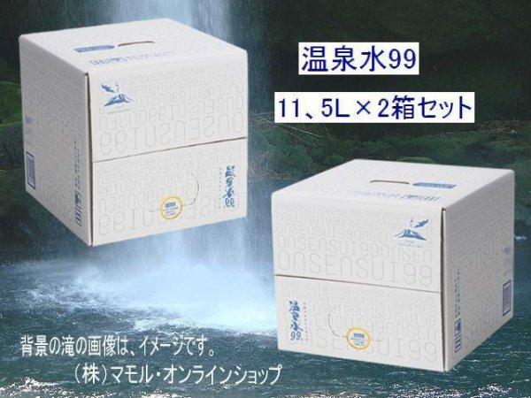 画像1: 温泉水99・11、5L×2箱セット 送料無料・直送品!(東北・北海道は、送料が発生します)